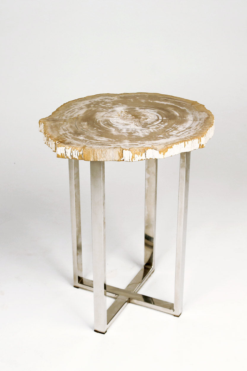 Petrified Wood Side Tables with Chrome Base