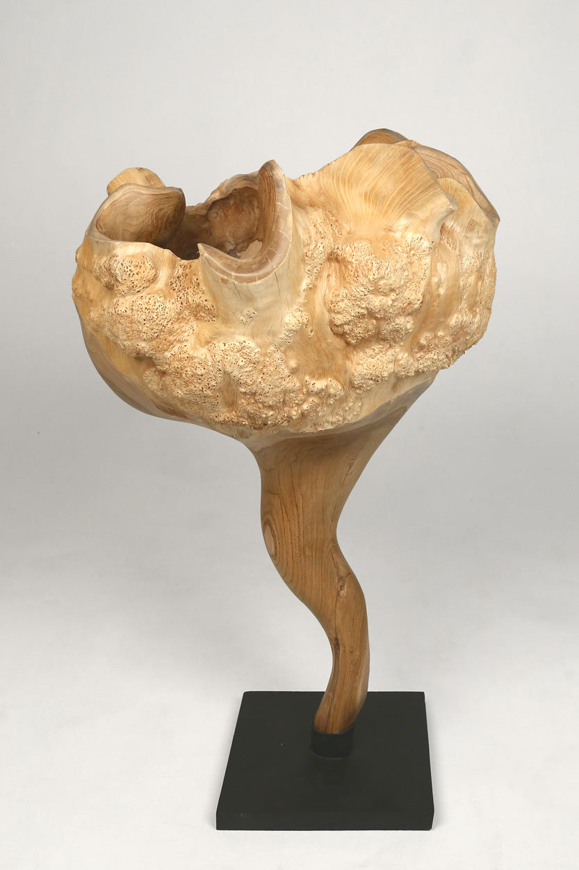 Teak Wood Sculpture I