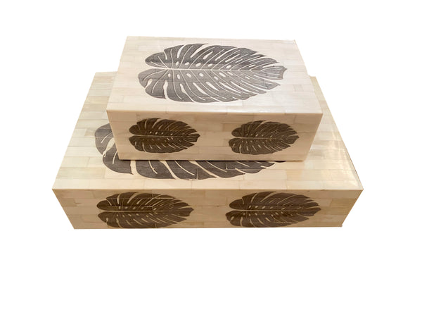 Etched Monstera Leaf  Box