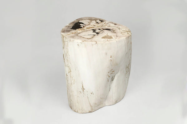 Petrified Wood Stump Side Table- II