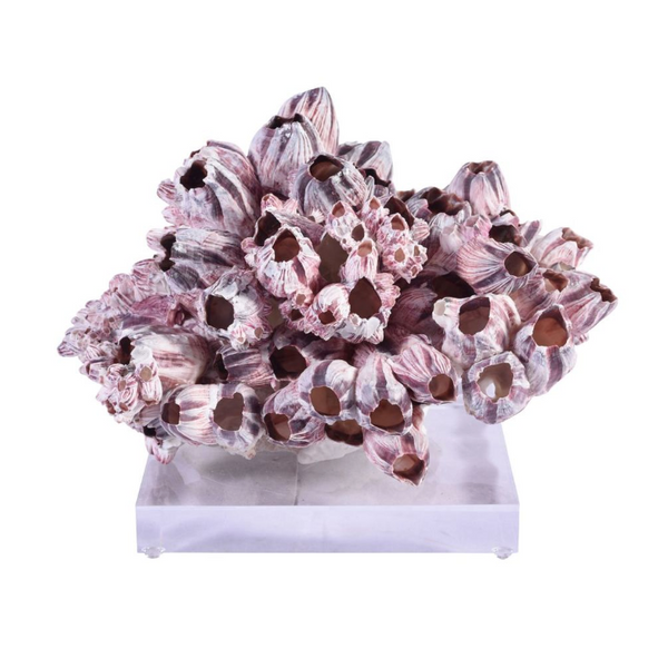 Barnacle Coral Sculptures