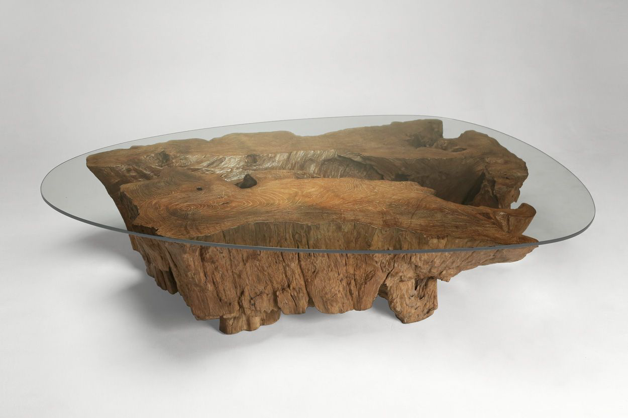 Mentawei Root Coffee Table