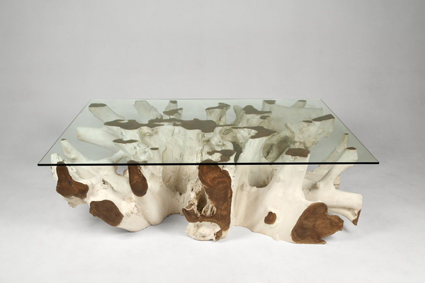 "Teak Root Coffee Table ""F"""
