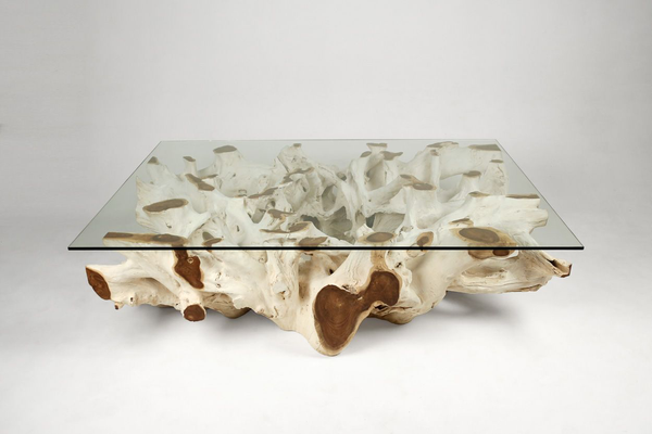 "Teak Root Coffee Table ""E"""