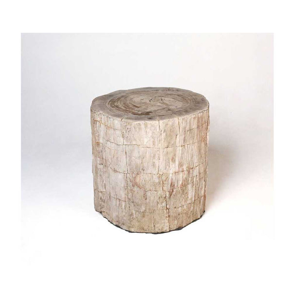 Petrified Wood Stump Side Tables