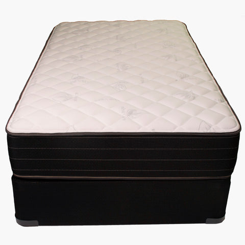 Fantasy Firm Foam Encased Twin Mattress by Jamison