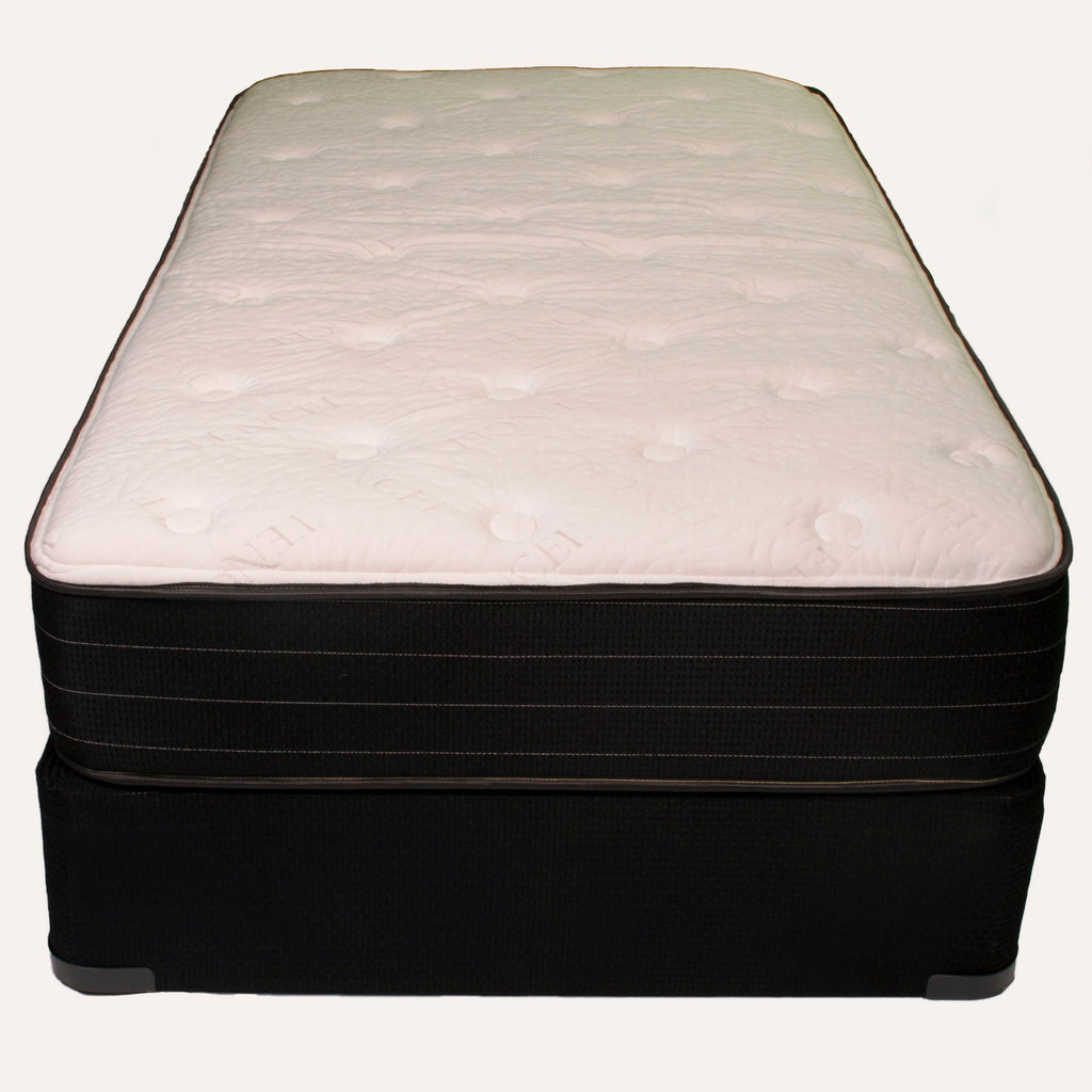 Radiance Plush Foam Encased Twin Mattress by Jamison