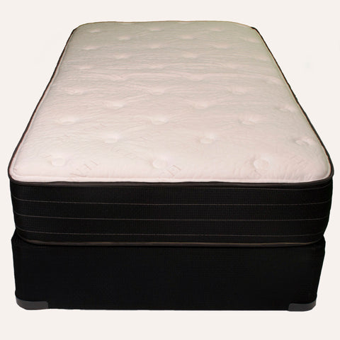 Radiance Plush Foam Encased Queen Mattress by Jamison