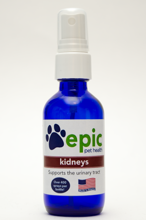Kidney All Natural Pet Supplement Supports Kidney and Bladder Function. Alleviates constant urination. Also increases energy in older pets. Simply spray on body, food & water. Made in USA.