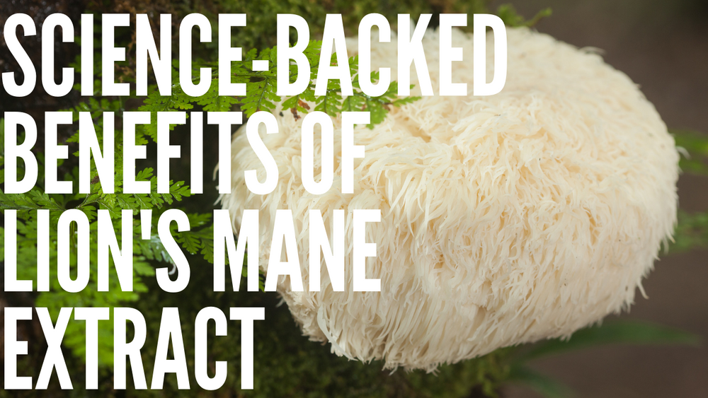 Science-Backed Benefits of Lion's Mane Extract