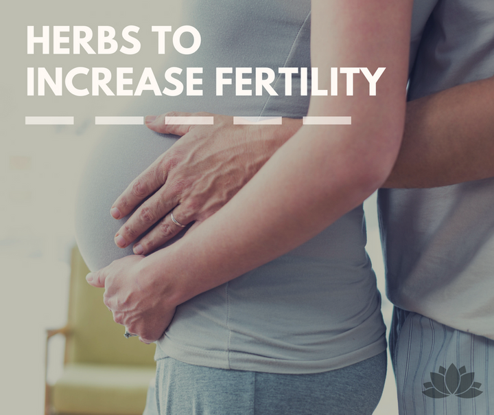 Top 7 Tonic Herbs to Increase Fertility