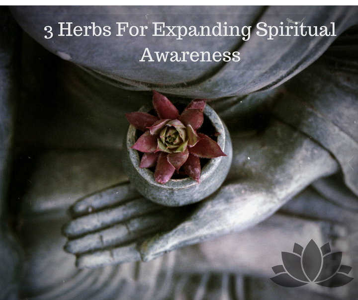 3 Herbs for Expanding Spiritual Awareness