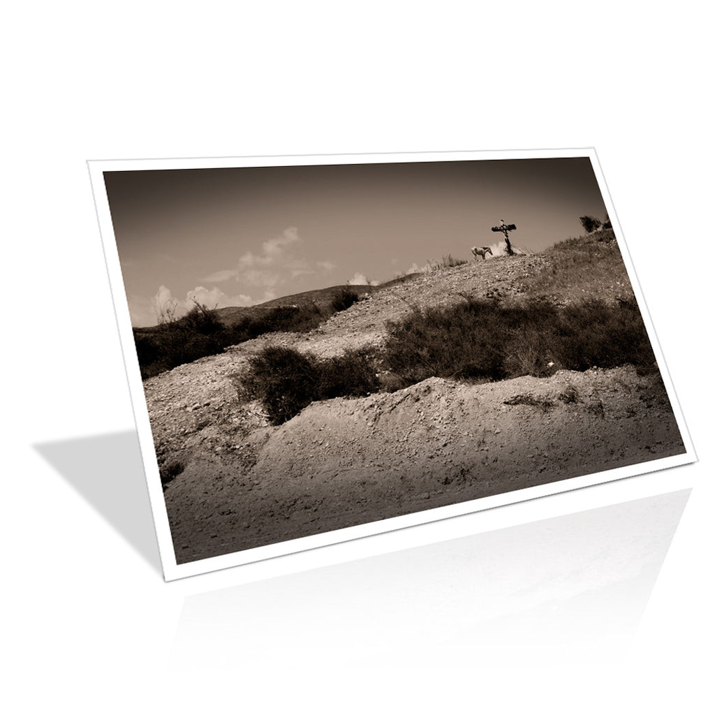 i2believe_resting_place 24 x 18 Bordered Print