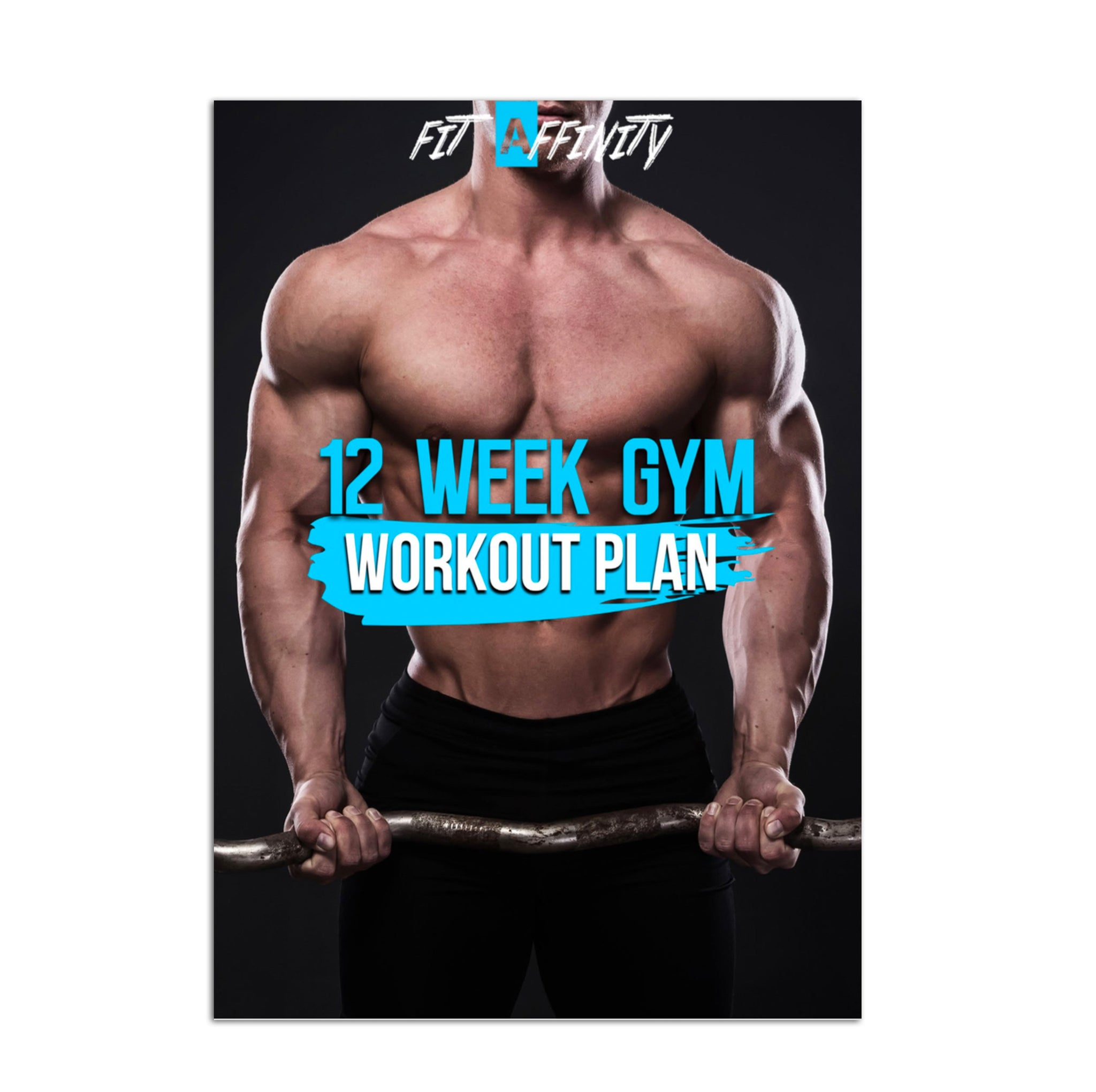 12 Week Gym Workout Plan For Men