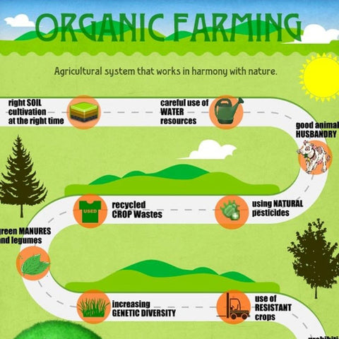 Major benefits of organic farming for Organic soil meaning