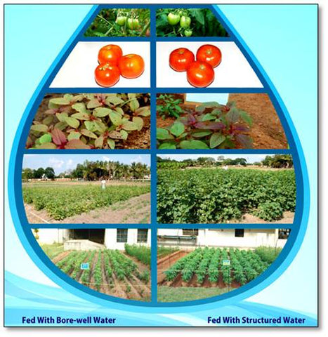Difference of good quality irrigation water and poor quality irrigation water