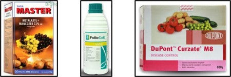 Chemical to control the fungal leaf spot diseases
