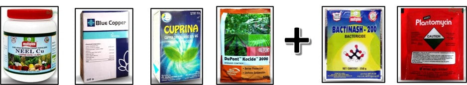 Chemicals to control Paddy bacterial diseases