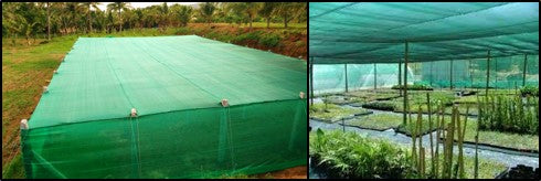 Shade net structures for nursery