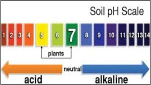 Soil pH- an important factor in crop production