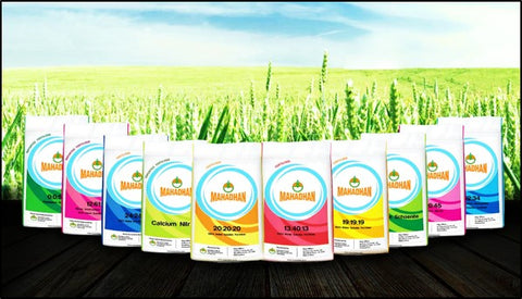 Water soluble fertiliser for muskmelon