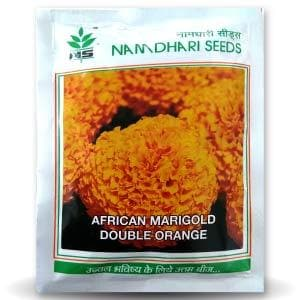 NS DOUBLE ORANGE  (AFRICAN MARIGOLD)