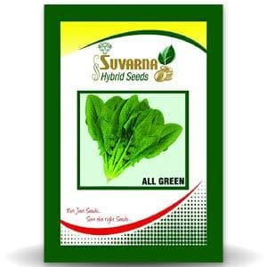 ALL GREEN PALAK - BigHaat.com