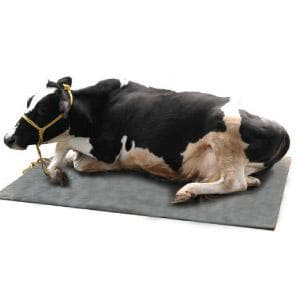 ANIMAL RUBBER MAT - BigHaat.com