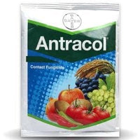 ANTRACOL FUNGICIDE - BigHaat.com
