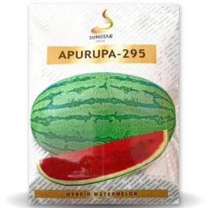 APURUPA - 295 WATER MELON - BigHaat.com