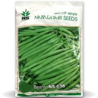 NS 636 FINE/PENCIL BEANS - BigHaat.com