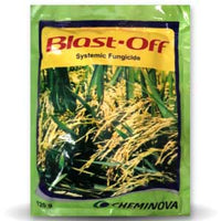 BLAST OFF SYSTEMIC FUNGICIDE - BigHaat.com