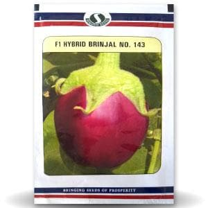 BRINJAL No. 143 - BigHaat.com