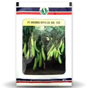 BRINJAL No. 183 - BigHaat.com