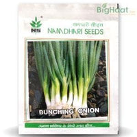 NS BUNCHING ONION - BigHaat.com