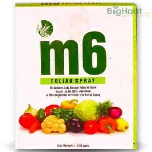 M6 BORON MICRONUTRIENT FERTILIZER - BigHaat.com