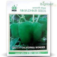 CALIFORNIA WONDER (OP) CAPSICUM - BigHaat.com