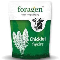 CHICKLET (CHICORY) - BigHaat.com