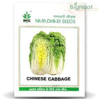 NS 1457 CHINESE CABBAGE - BigHaat.com