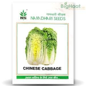 NS 1461 CHINESE CABBAGE - BigHaat.com