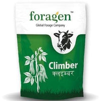CLIMBER (COWPEA- INDETERMINATE) - BigHaat.com