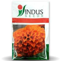 DEEP ORANGE MARIGOLD - BigHaat.com
