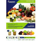 EVERGREEN INSTA VEG AND FRUIT WASH