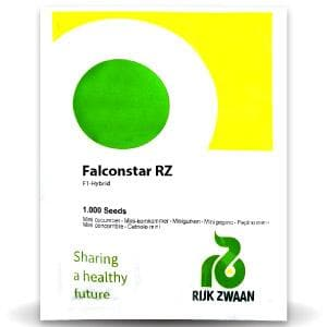 FALCONSTAR RZ F1 CUCUMBER - BigHaat.com