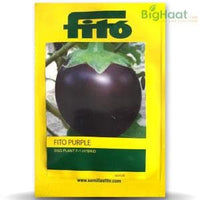 FITO PURPLE BRINJAL - BigHaat.com