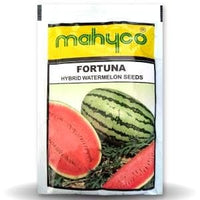 FORTUNA (Watermelon) - BigHaat.com