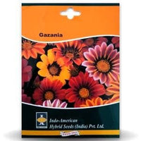 GAZANIA - SUNSHINE MIX - BigHaat.com