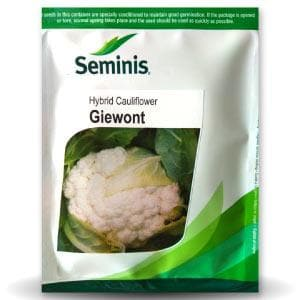 GIEWONT CAULIFLOWER - BigHaat.com