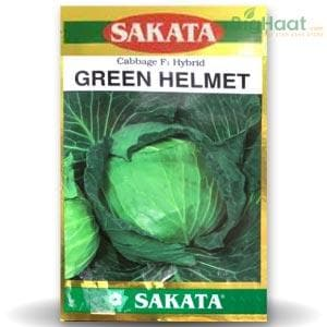 GREEN HELMET CABBAGE
