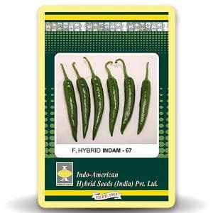 INDAM 67 CHILLI - BigHaat.com